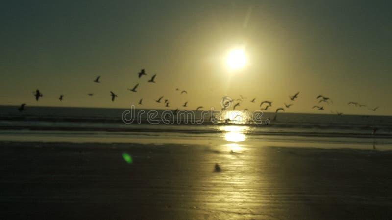 Tramonto il Belucistan della spiaggia di Gwadar fotografia stock libera da diritti
