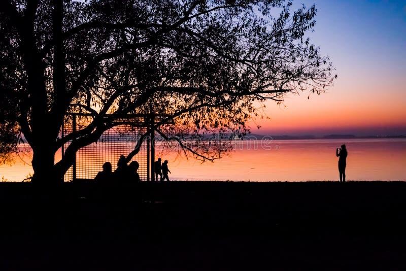 Tramonto incredibile e luminoso sopra l'acqua contro lo sfondo di cui la siluetta di grande albero fotografia stock