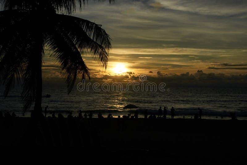 Tramonto in mare Grande T della palma Vista sul mare fotografia stock libera da diritti