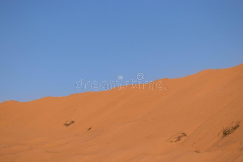 Tramonto in mezzo al deserto con la luna immagini stock