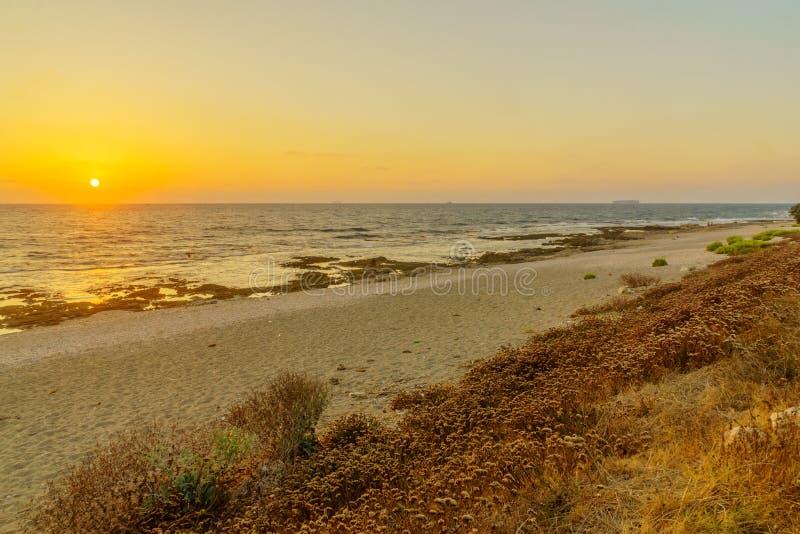Tramonto nella costa di mar Mediterraneo e parco di Shikmona, Haifa immagini stock