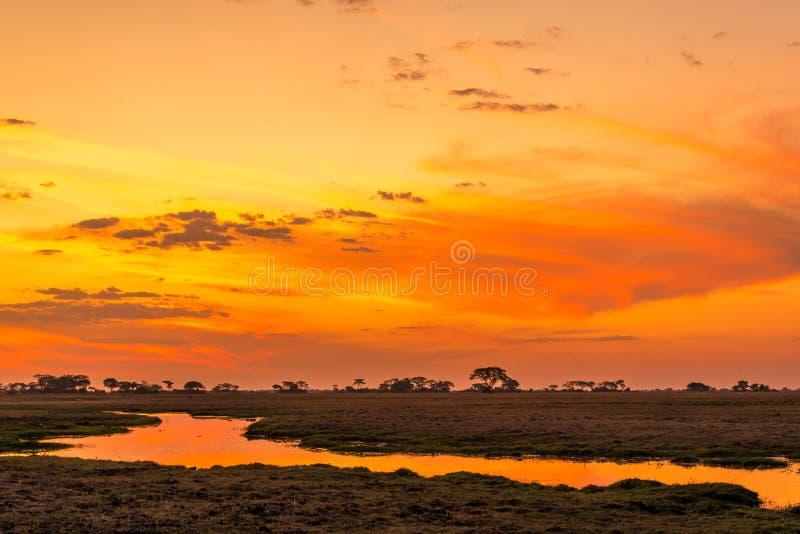 Tramonto nello Zambia fotografia stock