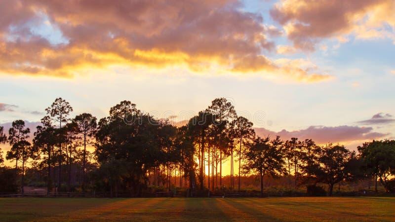 Tramonto o alba in vecchia Florida immagini stock