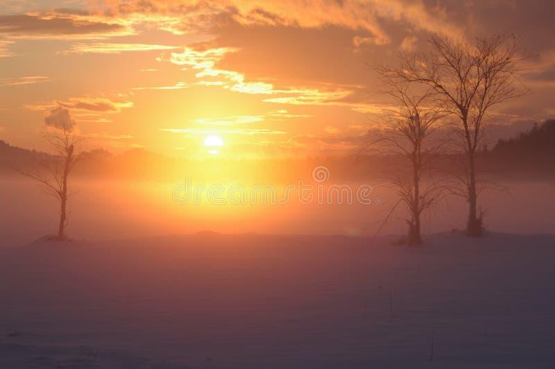 Tramonto romantico nebbioso di inverno fotografia stock