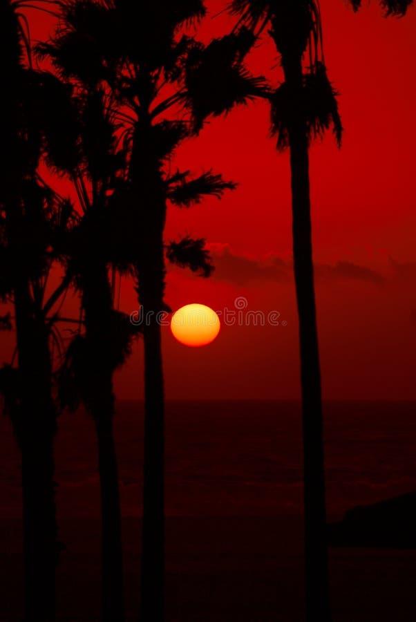 Tramonto rosso del cielo immagini stock libere da diritti