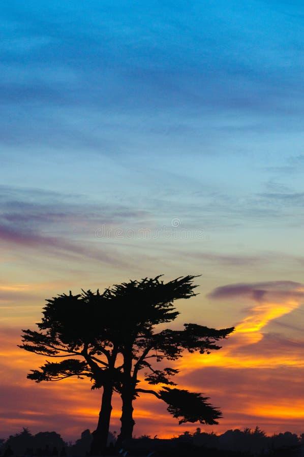 Tramonto sopra Cypress fotografia stock