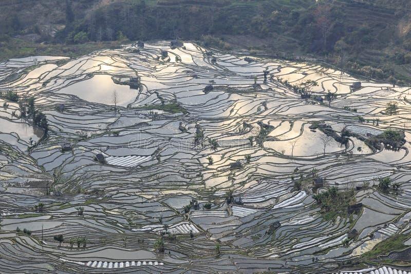 Tramonto sopra i terrazzi del riso di YuanYang nel Yunnan, Cina, uno di ultimi siti del patrimonio mondiale dell'Unesco fotografia stock