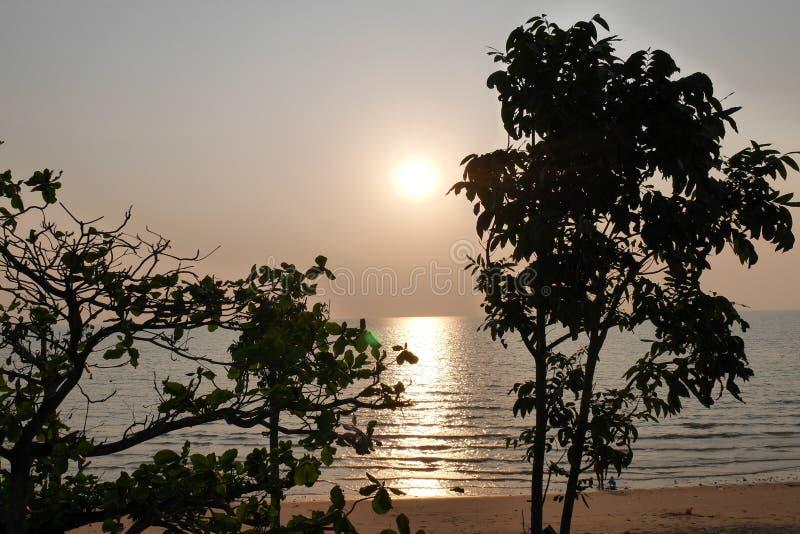 Tramonto sopra sopra il golfo del Siam attraverso gli alberi fotografia stock libera da diritti