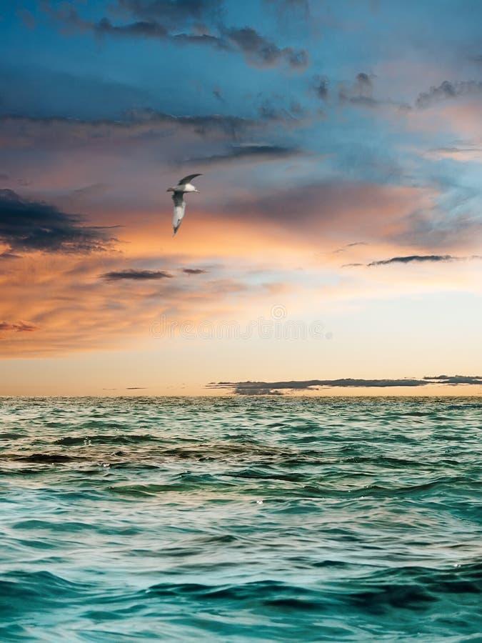 Tramonto sopra il mare. fotografia stock