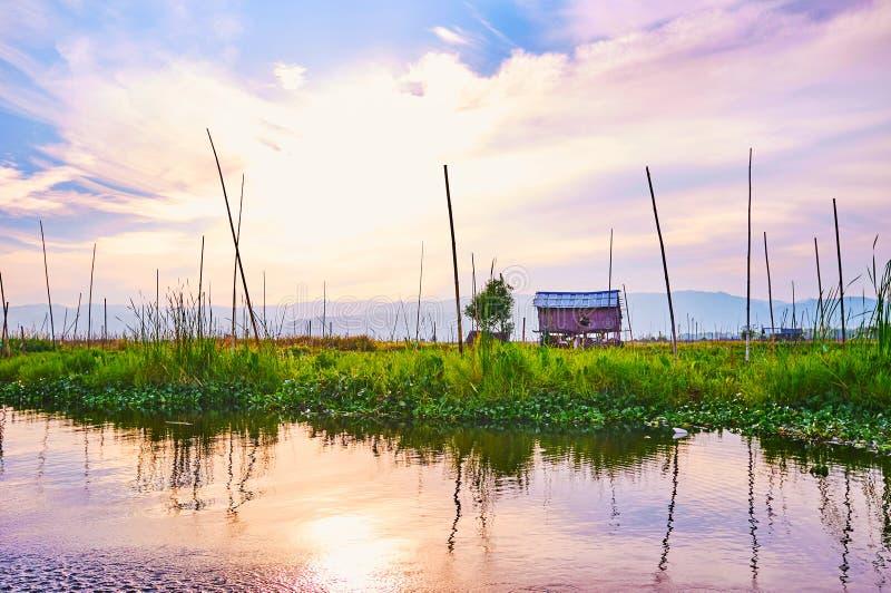 Tramonto sopra l'azienda agricola di galleggiamento, lago Inle, Myanmar fotografia stock