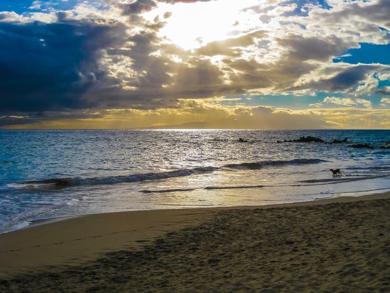 tramonto sopra l'oceano, isola di Maui, Hawai immagine stock libera da diritti