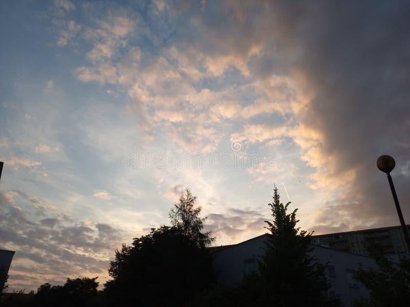 Tramonto sopra la città con gli alberi alti e gli alberi di Natale nuvole rosa dell'aria sui precedenti del cielo blu con un aere fotografie stock libere da diritti