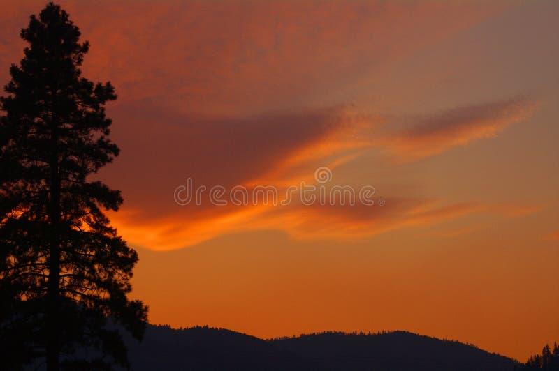 Tramonto sopra Sapphire Mountains, Montana immagini stock