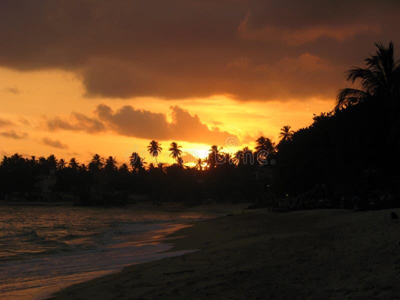 Spiaggia di Unawatuna immagine stock
