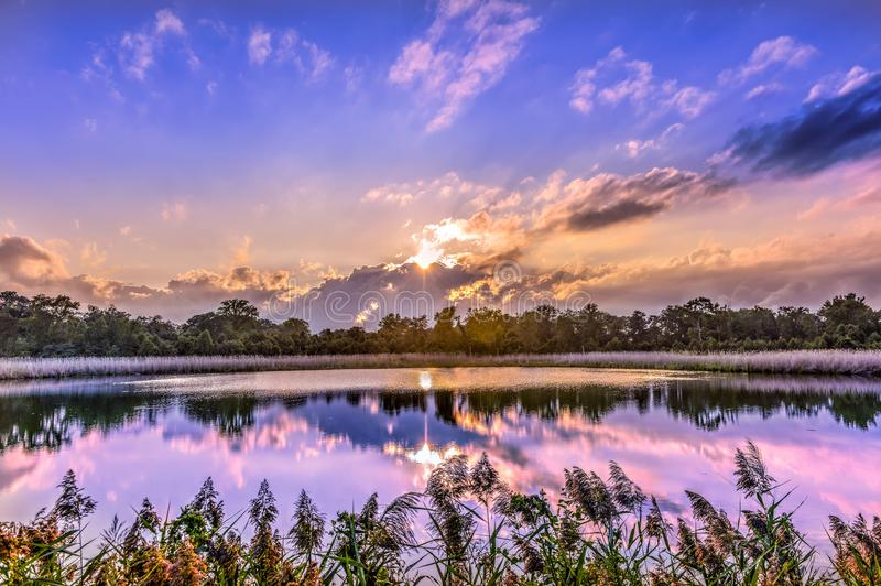 Tramonto splendido su uno stagno della baia di Chesapeake immagini stock