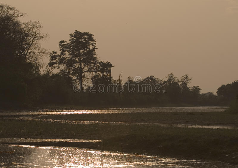 Tramonto stupefacente nella giungla, Bardia, Nepal immagini stock libere da diritti