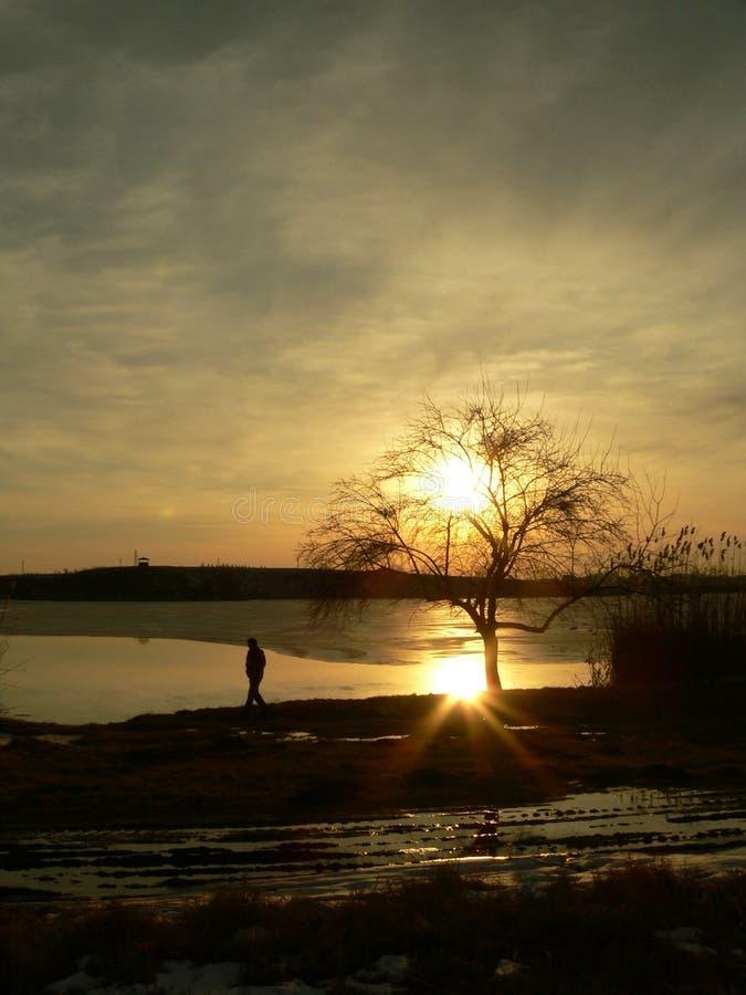 Tramonto su un lago fotografia stock libera da diritti