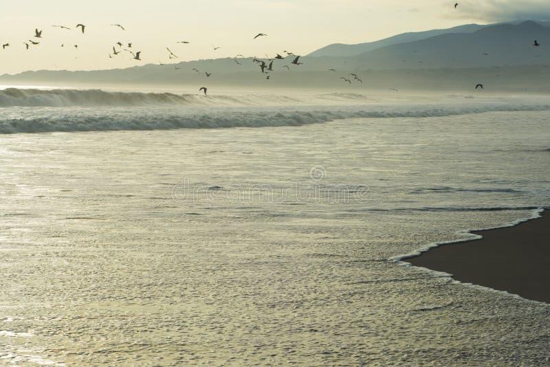Tramonto sulla costa del Pacifico del Perù fotografie stock libere da diritti