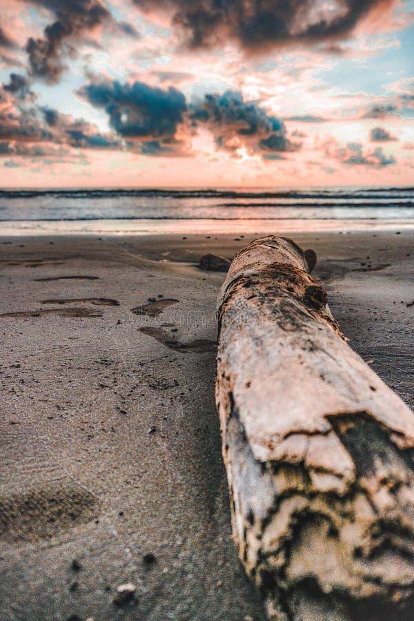 Tramonto sulla spiaggia delle rive caraibiche fotografia stock libera da diritti