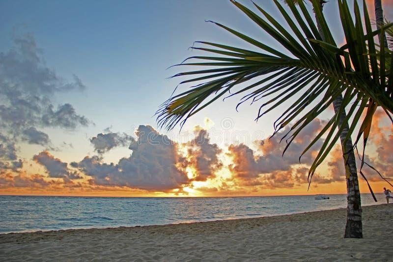 Tramonto sulla spiaggia sabbiosa Sera sull'oceano fotografia stock libera da diritti