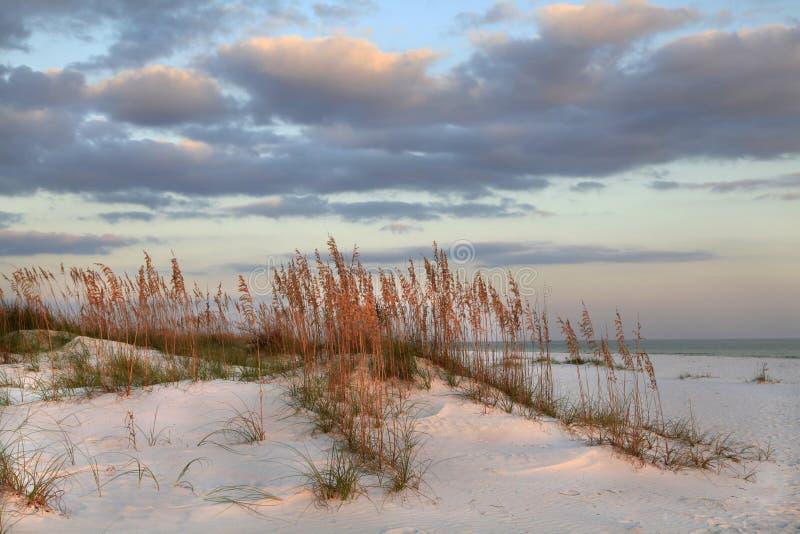 Tramonto sulle dune di sabbia fotografie stock libere da diritti