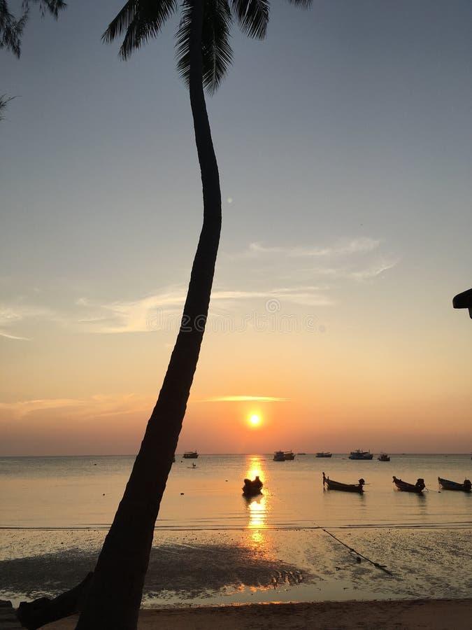 Tramonto Tailandia dell'isola fotografia stock libera da diritti