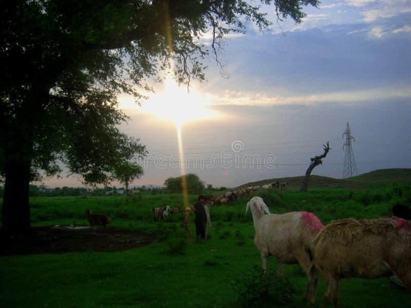 Tramonto in Taxila immagine stock libera da diritti