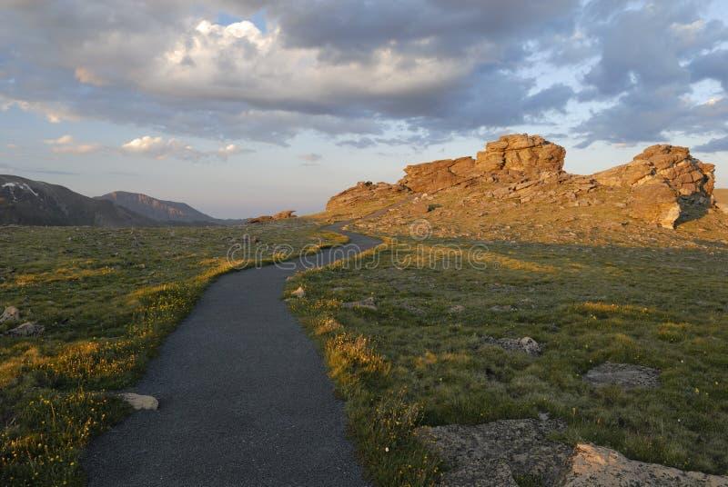 Tramonto in tundra alpina, montagne rocciose del Colorado immagini stock libere da diritti