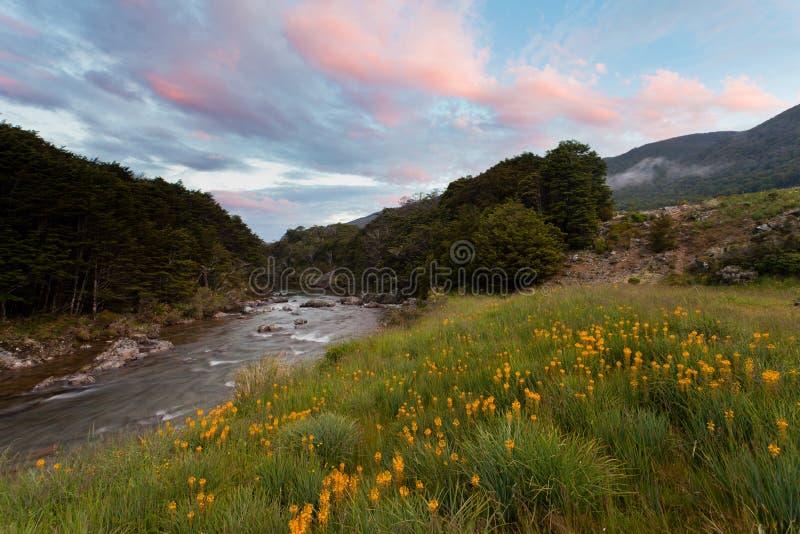 Tramonto in valle di Cobb di Kahurangi NP, Nuova Zelanda fotografie stock libere da diritti
