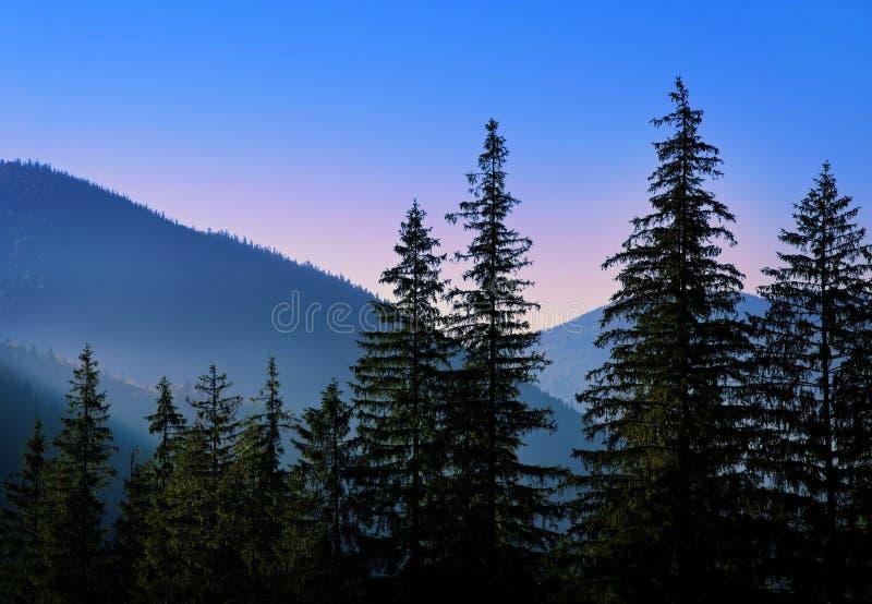 Tramonto viola in montagne fotografie stock