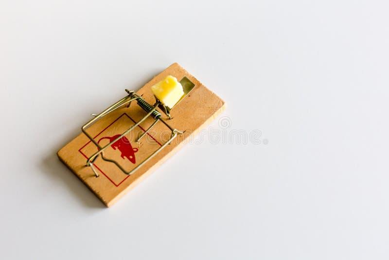 Trampa del ratón o de rata con queso imagen de archivo