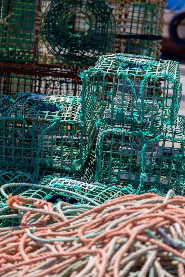Trampas cuadradas del cangrejo verde en infante de marina foto de archivo