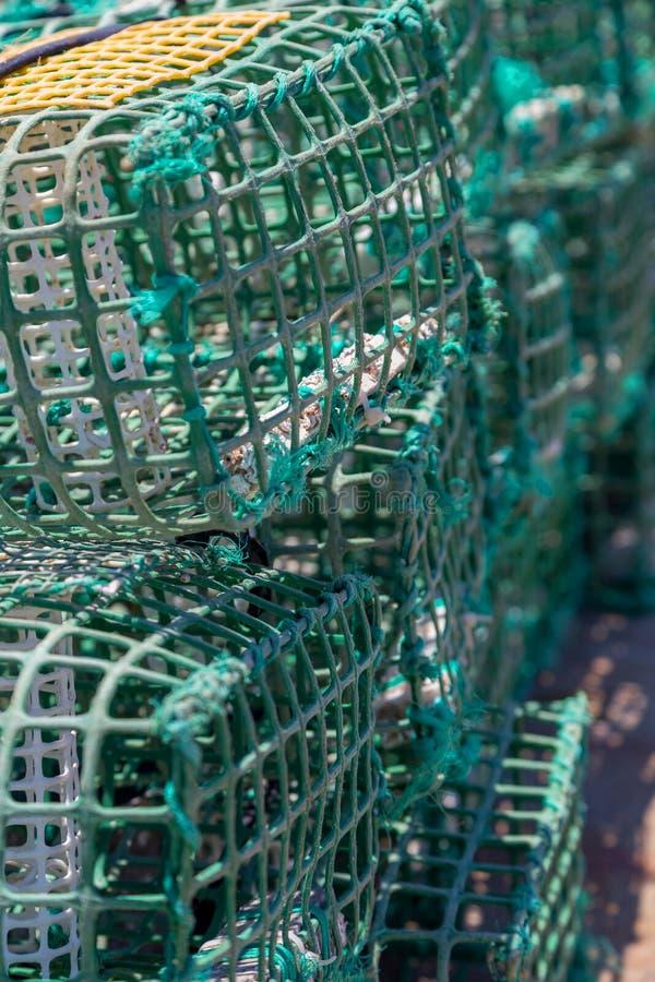 Trampas cuadradas del cangrejo verde en infante de marina fotografía de archivo