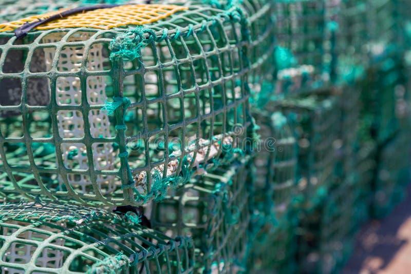 Trampas cuadradas del cangrejo verde en infante de marina imagen de archivo