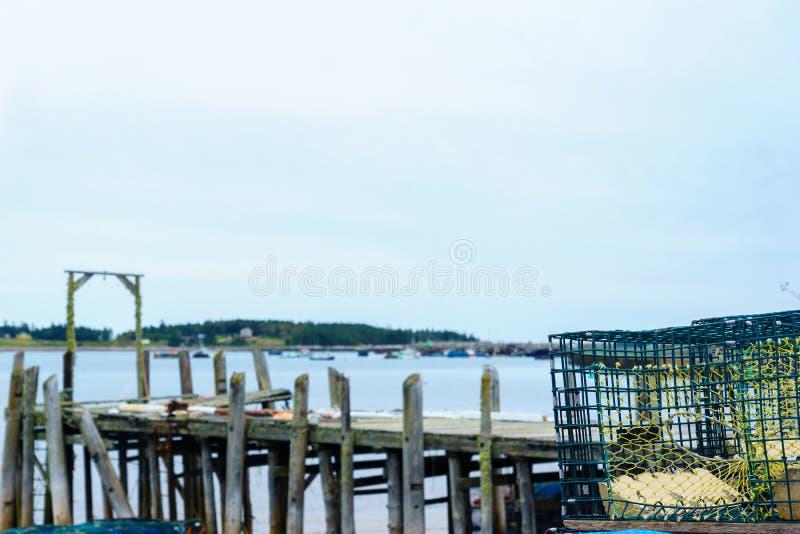 Trampas de la langosta en el puerto del cazo, Nuevo Brunswick foto de archivo libre de regalías