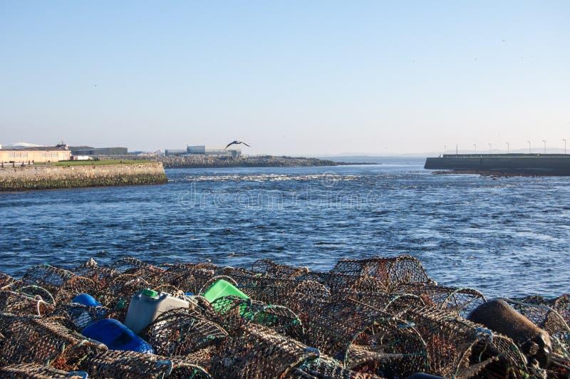 Trampas de los pescados en el río imágenes de archivo libres de regalías