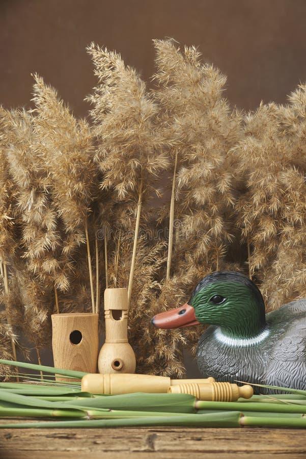 Trampas y silbidos del pato foto de archivo libre de regalías