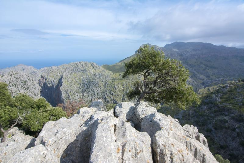 Tramuntana山Serra在马略卡,巴利阿里群岛,西班牙西部的de Tramuntana  库存照片