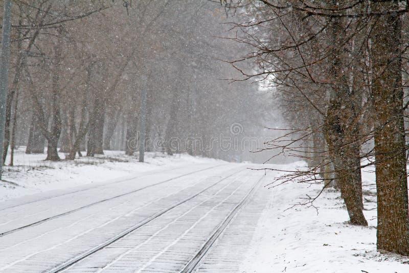 Tramwajów drzewa w opadzie śniegu i poręcze zdjęcie royalty free