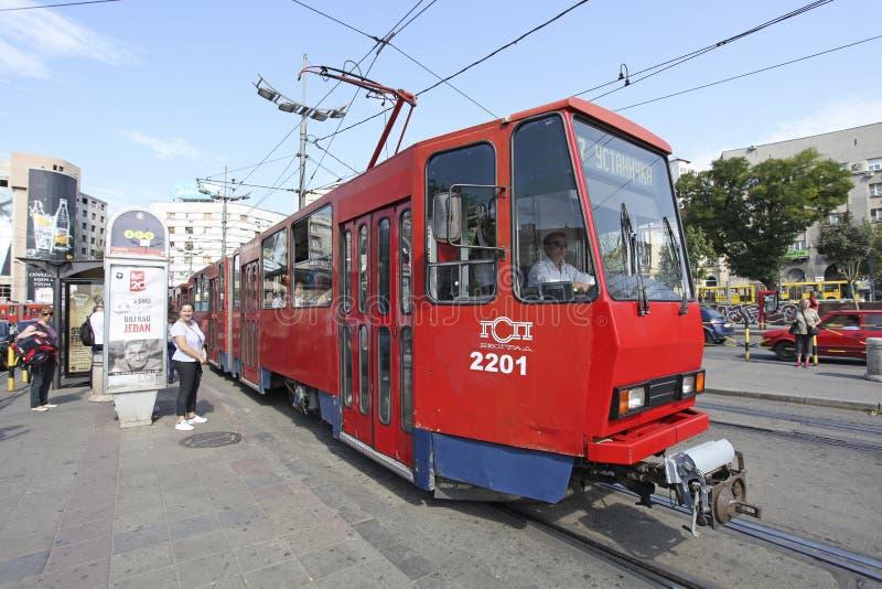 Tramway à Belgrade image libre de droits