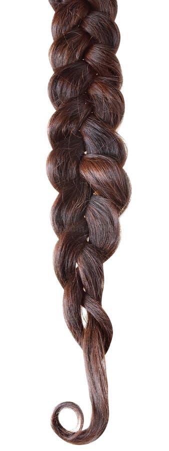 Trança do cabelo das mulheres foto de stock royalty free