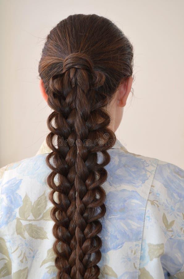 Trança francesa a céu aberto, penteado com comprimento longo do cabelo fotografia de stock