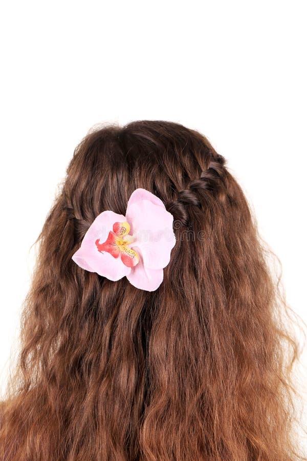Trança longa do cabelo de Brown com flor. imagens de stock royalty free