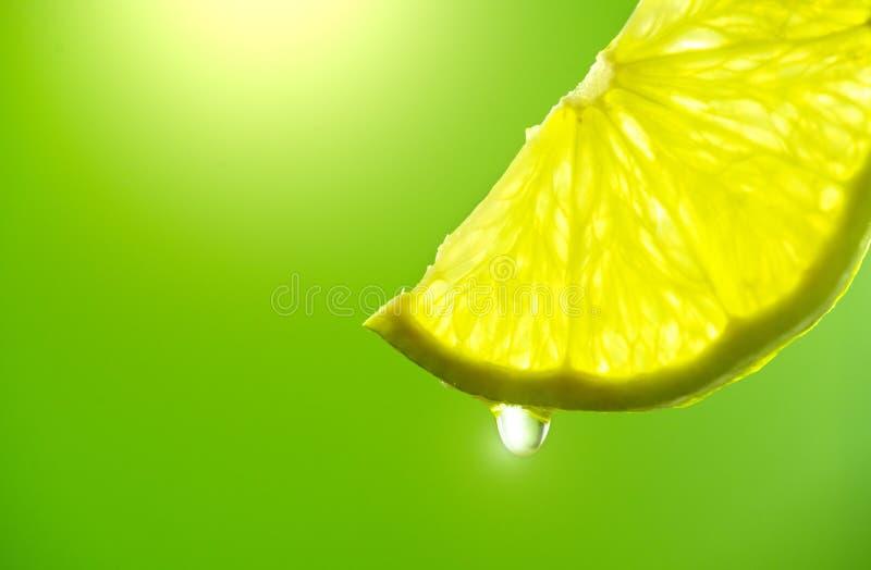 Tranche de citron avec la baisse du plan rapproché de jus Chaux fraîche et juteuse au-dessus de fond vert image libre de droits