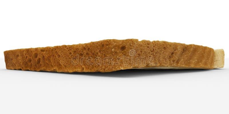 Tranche de pain - plan rapproché simple de croûte de pain grillé - d'isolement sur le blanc photographie stock