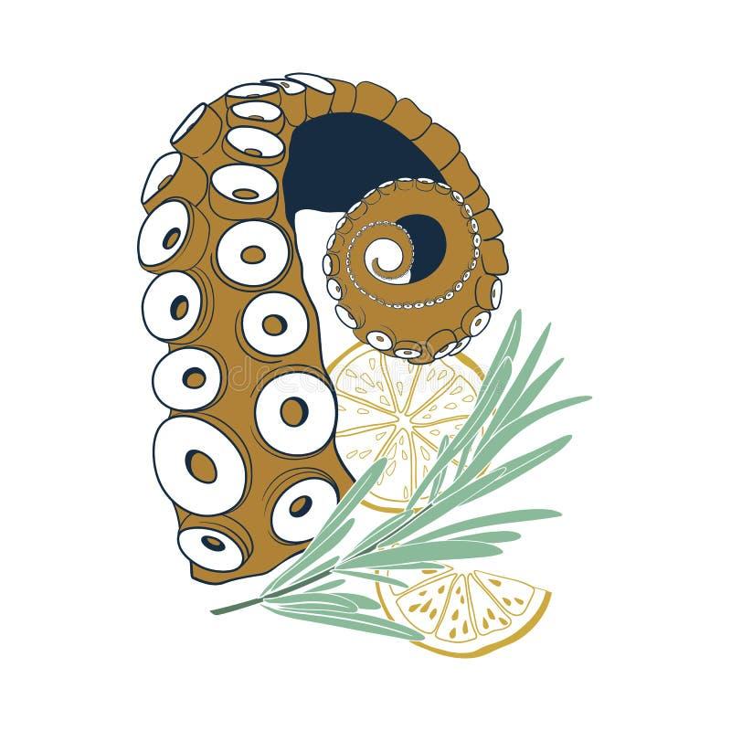 Tranche et romarin de citron de witn de tentacule de poulpe d'isolement sur le fond blanc illustration stock