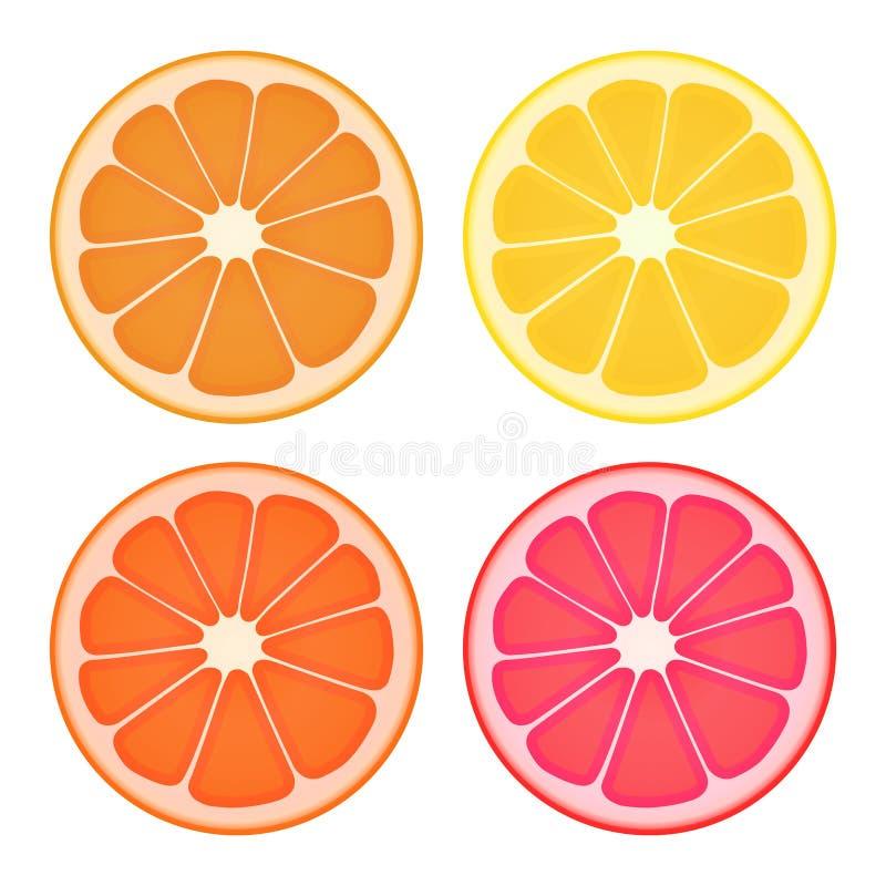 Tranches d'agrumes Quatre variations de couleur D'isolement sur le blanc illustration libre de droits