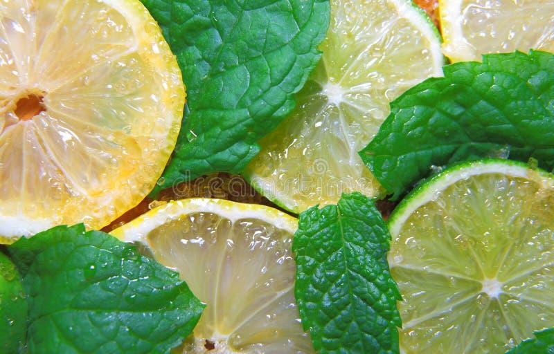 Tranches de chaux et citrons, feuilles de menthe et sucre de canne photographie stock