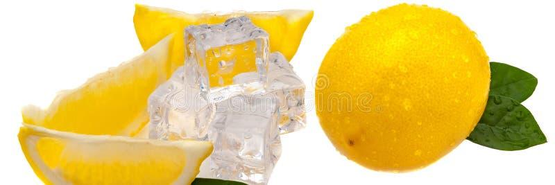 Tranches de citron, de feuilles vertes, de cubes de glace froide, et d'un citron jaune frais entier en isolation photo stock