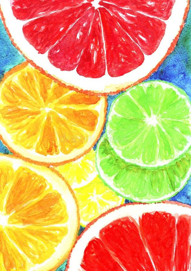 Tranches de fond de modèle d'aquarelle de citron, d'orange et de pamplemousse illustration stock